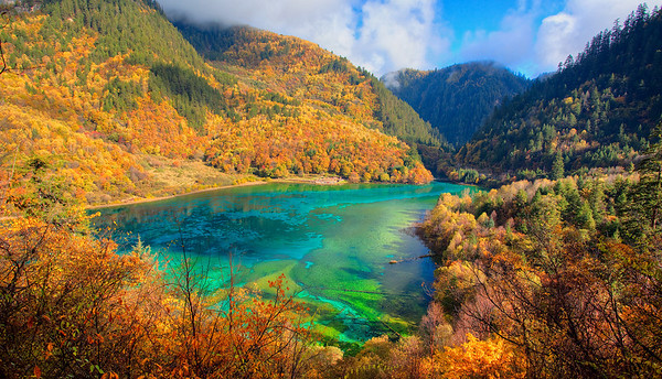 Five Flower Lake, the pride of JiuZhaiGou, China