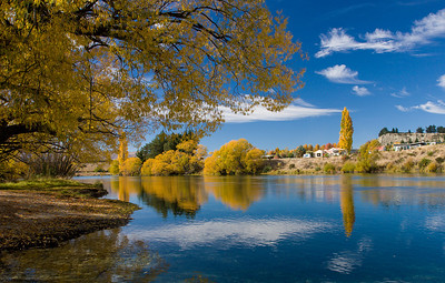 Fall foliage at South Island, New Zealand