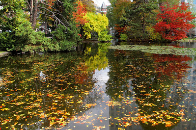 Fall at Sapporo, Japan